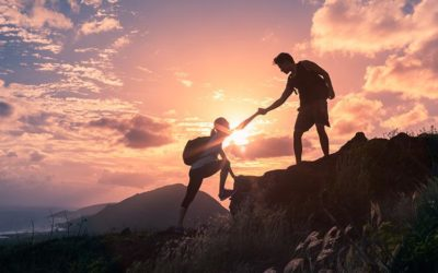The importance of building trust in your organisation
